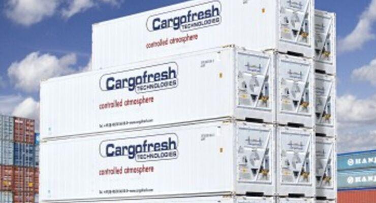 Cargofresh-Insolvenz: Vorstand gibt Hauptaktionär die Schuld