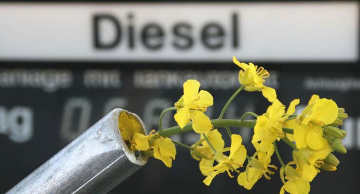 Symbolbild Biodiesel