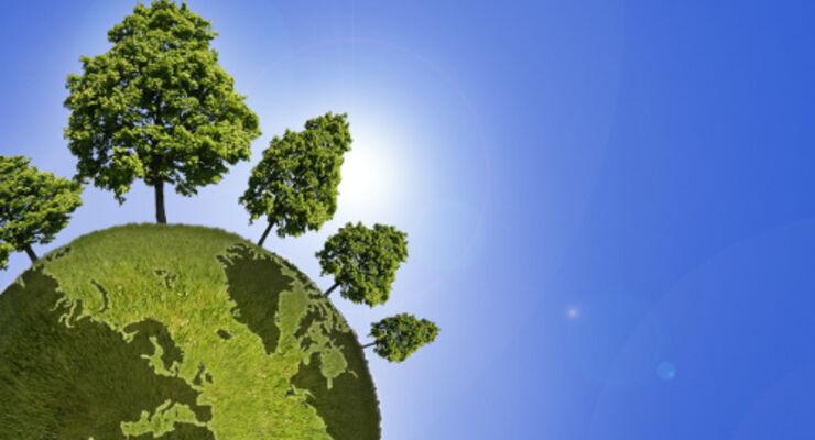 Wallenius Wilhelmsen spart CO2 ein