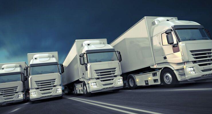 weiße Lkw, Flotte